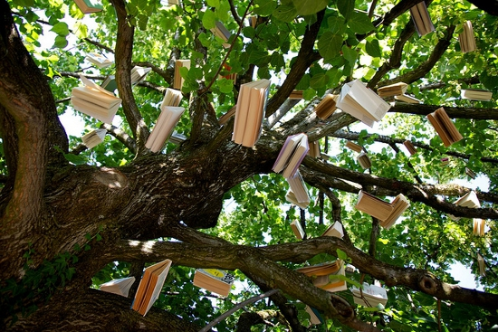 Tree with books hanging down